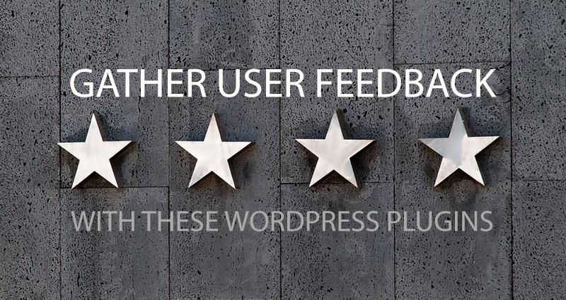 كيفية جمع ملاحظات المستخدم على موقع WordPress الخاص بك