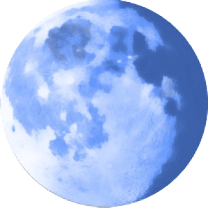 Download Pale Moon Browser 2021 for the computer
