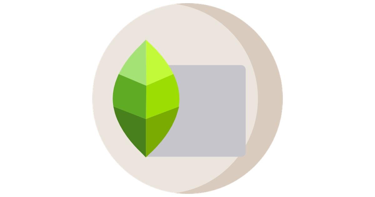 برنامج Snapseed التعليمي: دليل سهل لتحرير الصور على هاتفك